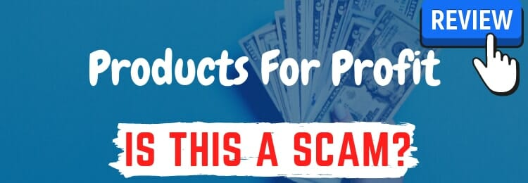 products for profit review