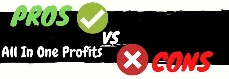 all in one profits review pros vs cons